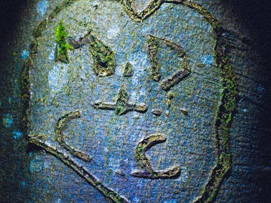 The LOVEHEARTS of EPPING FOREST